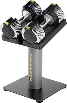 Gold's Gym Adjustable Dumbell & Stand