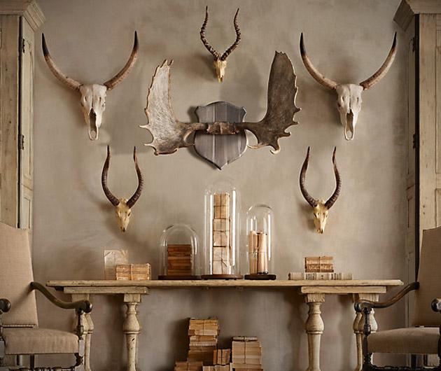 Restoration Hardware Horns & Antlers