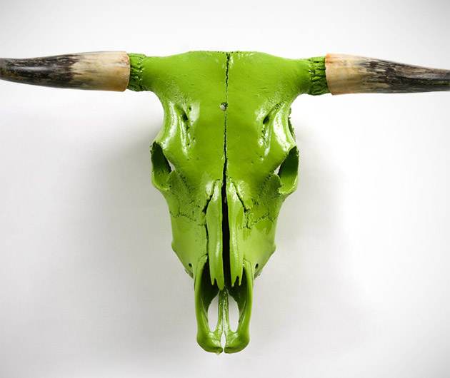 Painted Animal Skull Wall Mounts