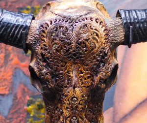 Aureus Arts Hand Carved Animal Skulls
