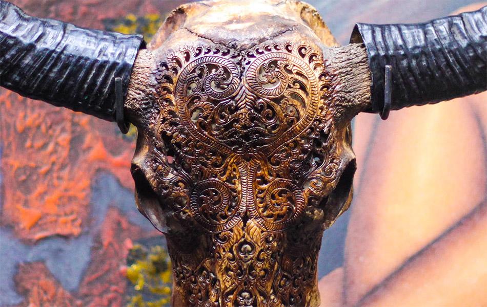 Aureus Arts Hand Carved Animal Skulls