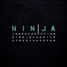 NIN/JA 2009