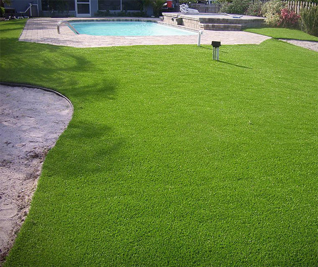 Turf Pro Grass