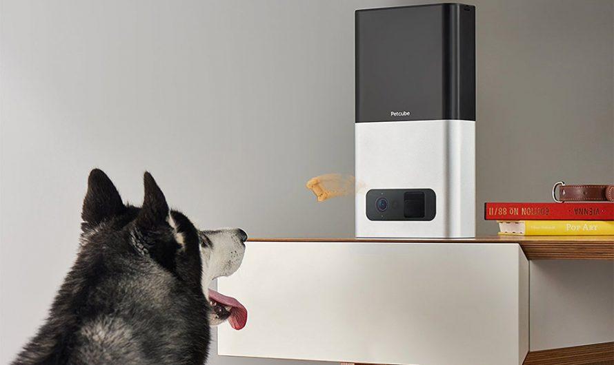 Petcube Bites Pet Camera