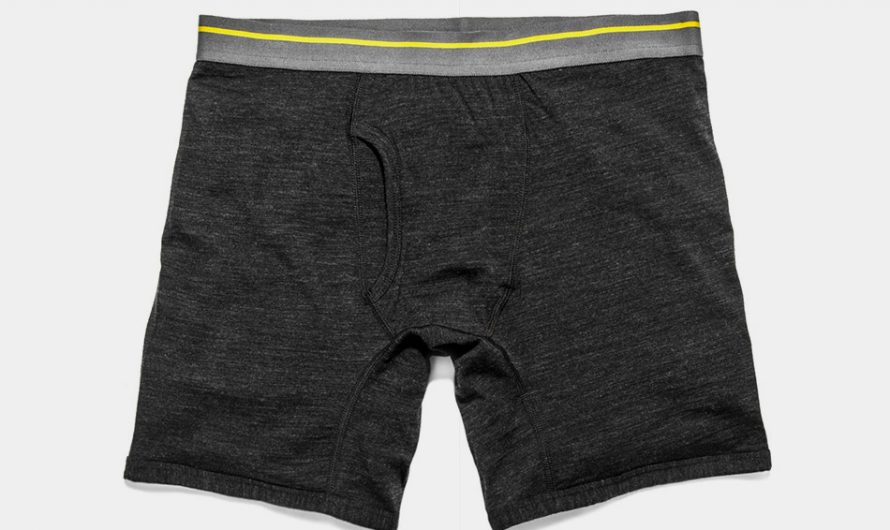 Civic Merino Boxer