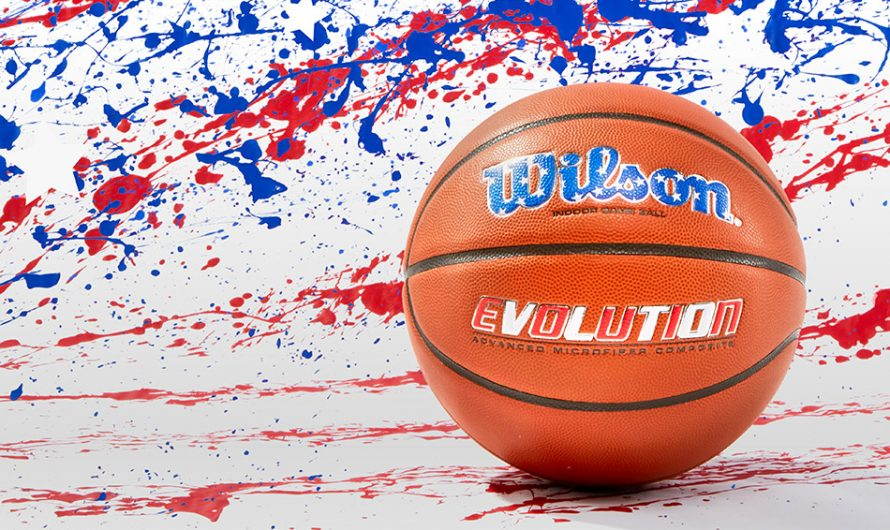 Wilson USA Special Edition Evolution Basketball
