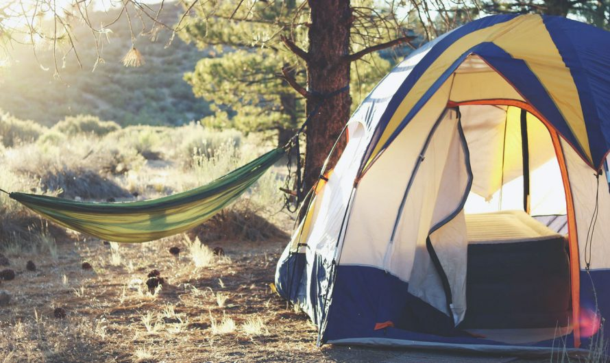 Essential Camping Gear to Camp in the Wild